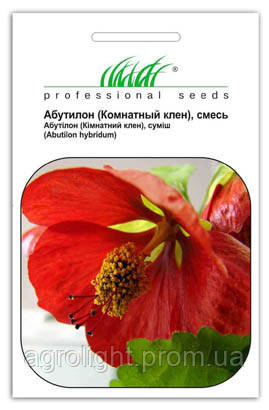 Купить семена абутилон цветы подарок любимой женщине золотые часы