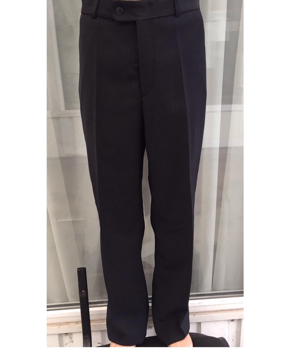 Мужские брюки West-Fashion модель Xristi N5