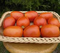 Семена томата Велоз F1 1000 шт Seminis / Семинис