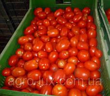 Семена томата Хайпил 108 , 1000 шт Seminis / Семинис
