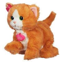 Игривый котенок FurReal Friends Дэйзи Интерактивная игрушка Daisy