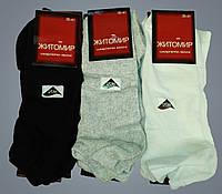 Шкарпетки жіночі. Житомир. Лайкра. Асорті з трьох кольорів.