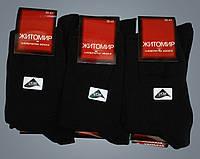 Носки женские. Житомир. Хлопок. Чёрный носки.