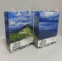 Подарочный пакет 155*60*220 мм с ручками