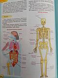 Енциклопедія для дітей., фото 3
