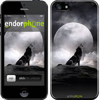 "Чехол на iPhone 5s Воющий волк ""934c-21"""