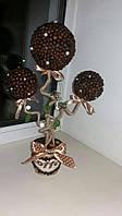 """Кофейное дерев""""Трио"""""""