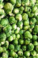 Семена брюссельской капусты Санда 0,5 г