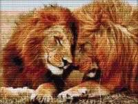 Вышивка крестом на канве Сильные львы 46х37 см (арт. MK034)