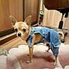 Комбинезон джинсовый для собаки. Одежда для собак, фото 10