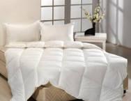 Одеяло пуховое Зима Raffaello