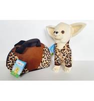 Собачка CHI CHI LOVE с сумочком
