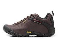 Merrell Continuum Goretex Brown мужские демисезонные кроссовки, фото 1