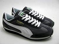 Кроссовки мужские Puma Wind. Пума винд, магазин обуви интернет