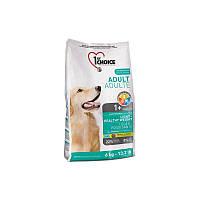 Корм малокалорийный 12 кг сухой для собак с избыточным весом супер премиум 1st Choice (Фест Чойс)