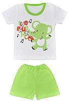 Летний комплект на мальчика Тропик (шорты ифутболка) , фото 1