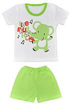 Летний комплект на мальчика Тропик (шорты ифутболка)