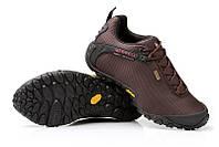 Мужские кроссовки Merrell Continuum Goretex Brown M. кроссовки интернет, мерелл обувь коричневая