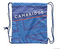 Сумка для  обуви SB-01 Cambridge blue, 40*36