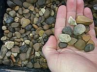 Галька речная натуральная аквариумистика, 5-20 мм