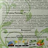 Огурец Полонез F1 партенокарпик 25шт., фото 2