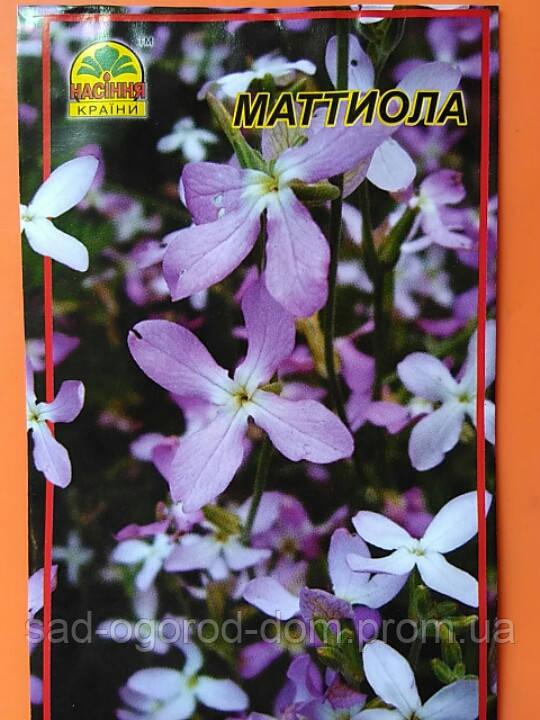 Маттиола(ночная фиалка)