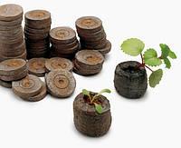 Торфяные таблетки (таблетки джиффи) для высева семян растений в них и получения рассады