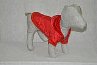 Курточка для собаки Сильвер