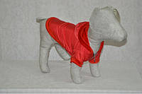 Курточка для собаки Сільвер, фото 1