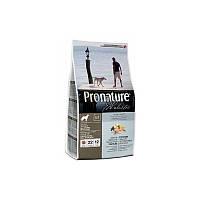 Корм 13,6 кг с атлантическим лососем и коричневым рисом сухой для собак Pronature Holistic (Пронатюр Холистик)