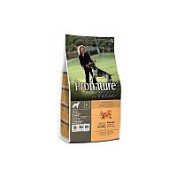 Корм 2,72 кг с уткой и апельсинами сухой для собак Pronature Holistic (Пронатюр Холистик)