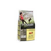 Корм 13,6 кг с курицей и бататом сухой для щенков всех пород Pronature Holistic (Пронатюр Холистик)