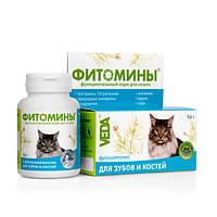 Витамины Фитомины для зубов и костей для кошек №100 Веда