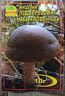 Мицелий гриба Подберезовик обыкновенный, 10г