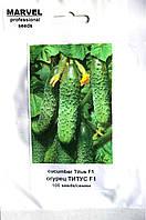 Семена огурца пчелоопыляемого Титус F1 (Польша), 100 шт, фото 1
