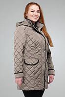 Демисезонная куртка  с контрастным кантом