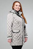 Демисезонная однотонная куртка полуприталенного фасона