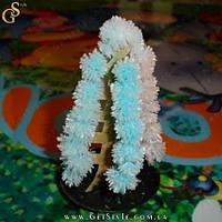 """Цветущее бумажное дерево - """"Magic Paper"""" - 5 шт., фото 1"""