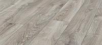 Ламинат Kronotex Mammut Дуб горный серебряный