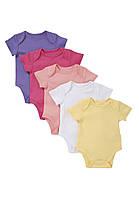 Детские бодики для девочки (5шт)   3-6, 6-9, 9-12 месяцев, фото 1