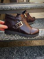Женские стильные ботинки цвета шоколада / ботинки низкие  женские с пряжкой, натуральная кожа