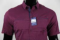 Рубашка мужская ANG 35380/35385