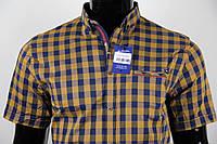 Рубашка мужская ANG 33560/33565