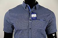 Рубашка мужская ANG 33740/33745