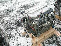 Двигатель Honda Accord Coupe 3.0 VTi- Vtec, 2006-today тип мотора J30A5