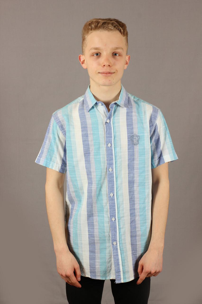 Рубашка мужская полоска Danger Jeans 522 Turquoise Размеры M/46 L/48