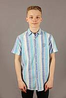Рубашка мужская полоска Danger Jeans 522 Turquoise Размеры M/46 L/48, фото 1