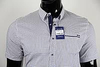 Рубашка мужская ANG 33380/33385