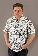 Рубаха мужская Zagato белая с серым Баталы Размеры 5XL