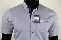 Рубашка мужская ANG 35390/35395